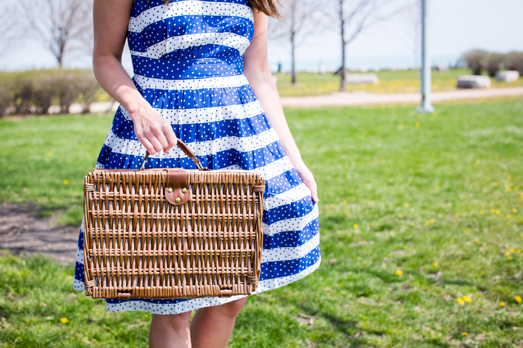 picnic in Lincoln Park with Modcloth